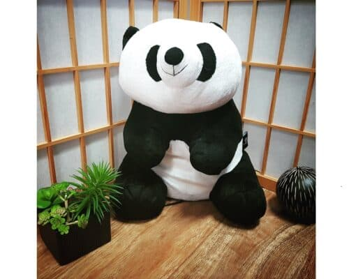 Massaging Panda | Relax For Life